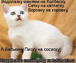 Котоматрица: Водолазку меняем на Колбаску, Сетку на катлетку, Воровку на коровку, А Васькину Писку на сосиску!