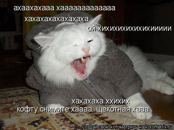 Котоматрица: ахаахахааа хааааааааааааа  хахахахахахахаха ой хихихихихихихиииии хахахаха ххихих кофту снимите хаааа, щекотная хааа