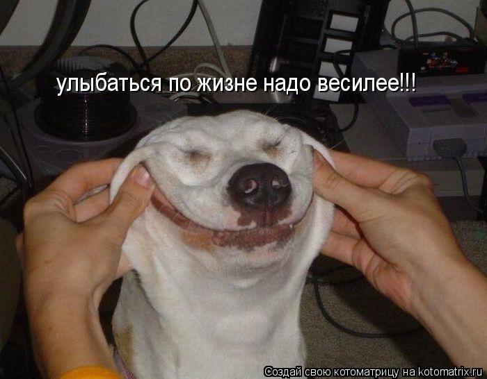 Котоматрица: улыбаться по жизне надо весилее!!!