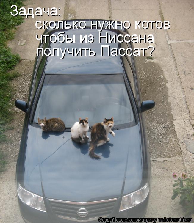 Котоматрица: Задача: сколько нужно котов чтобы из Ниссана получить Пассат?