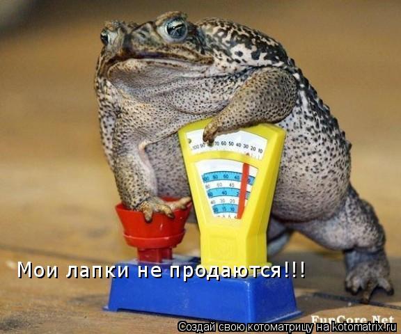 Котоматрица: Мои лапки не продаются!!!