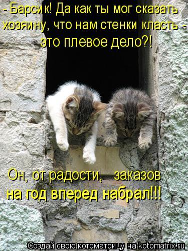 Котоматрица: - Барсик! Да как ты мог сказать хозяину, что нам стенки класть - это плевое дело?! Он, от радости,   заказов  на год вперед набрал!!!