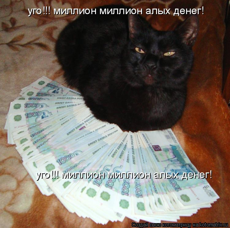 Котоматрица: уго!!! миллион миллион алых денег! уго!!! миллион миллион алых денег!