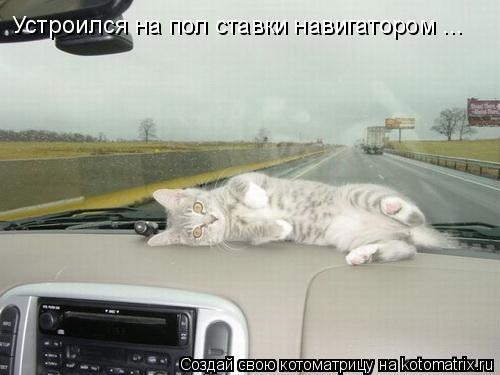 Котоматрица: Устроился на пол ставки навигатором ...