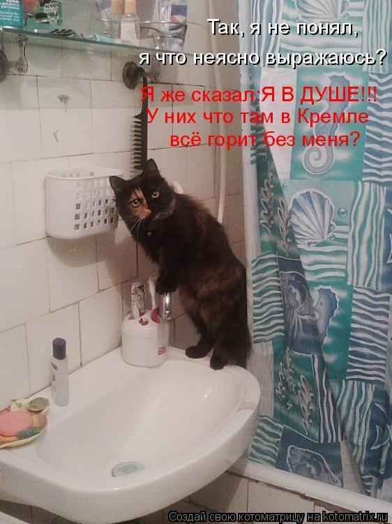 Котоматрица: Так, я не понял, я что неясно выражаюсь? Я же сказал:Я В ДУШЕ!!! У них что там в Кремле всё горит без меня?