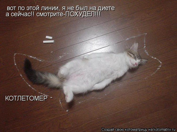 Котоматрица: вот по этой линии, я не был на диете а сейчас!! смотрите-ПОХУДЕЛ!!! КОТЛЕТОМЕР -