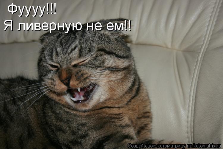 Котоматрица: Фуууу!!! Я ливерную не ем!!