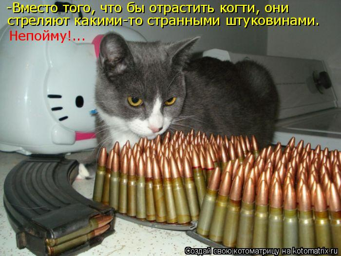 Котоматрица: -Вместо того, что бы отрастить когти, они  стреляют какими-то странными штуковинами. Непойму!...