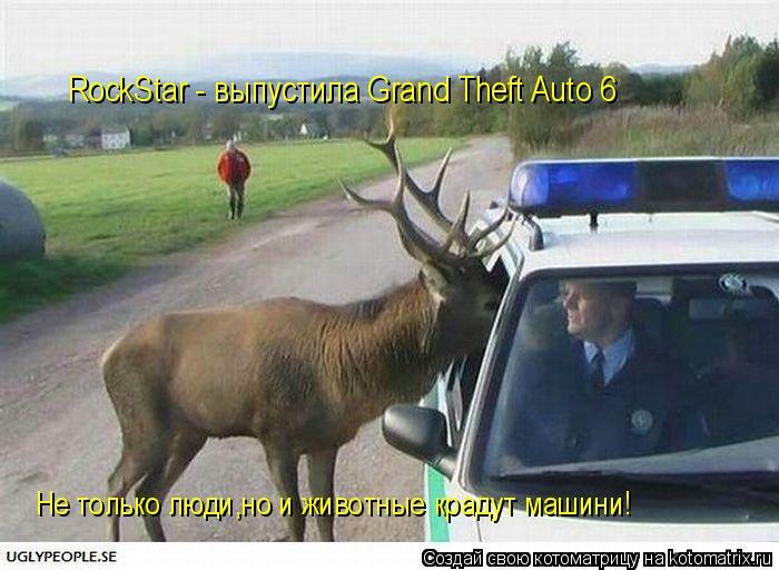 Котоматрица: RockStar - выпустила Grand Theft Auto 6 Не только люди,но и животные крадут машини!