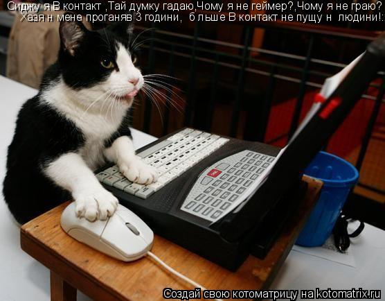 Котоматрица: Сиджу я В контакті,Тай думку гадаю,Чому я не геймер?,Чому я не граю? Хазяїн мене проганяв 3 години,І більше В контакт не пущу ні людини!:)