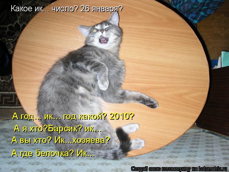 Котоматрица: Какое ик... число? 26 января?  А год... ик... год какой? 2010?  А я хто?Барсик? ик... А вы хто? Ик...хозяева? А где белочка? Ик...