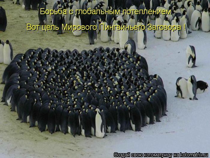 Котоматрица: Борьба с глобальным потеплением Вот цель Мирового Пингвиньего Заговора !