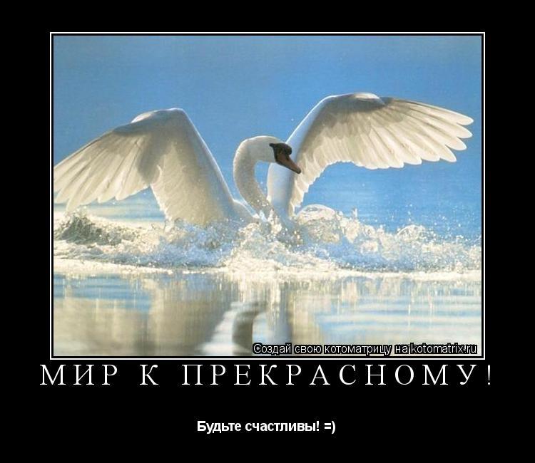 Котоматрица: Мир к прекрасному! Будьте счастливы! =)