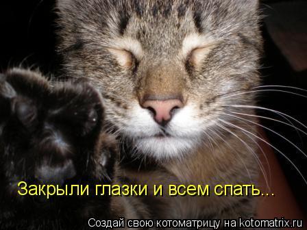 Котоматрица: Закрыли глазки и всем спать...