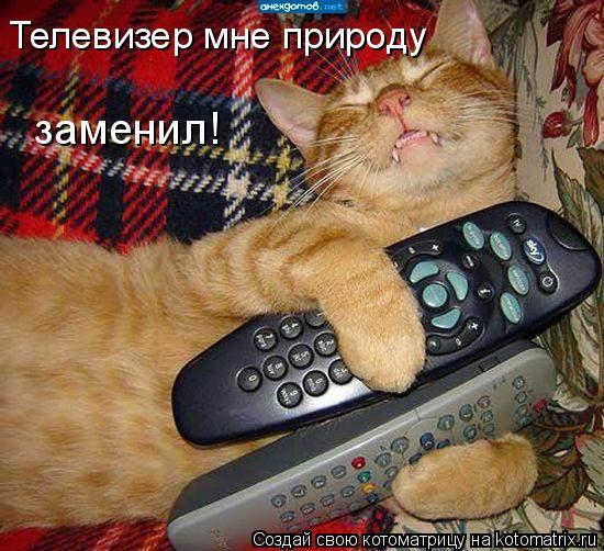 Котоматрица: Телевизер мне природу заменил!