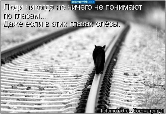 Котоматрица: Люди никогда не ничего не понимают  по глазам ...  . Даже если в этих глазах слёзы.