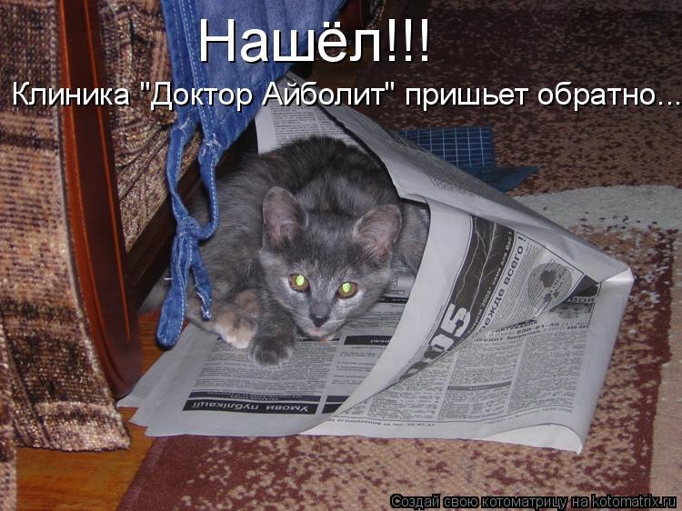 "Котоматрица: Нашёл!!! Клиника ""Доктор Айболит"" пришьет обратно..."