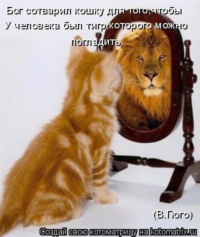 Котоматрица: Бог сотварил кошку для того,чтобы  У человека был тигр,которого можно  погладить. (В.Гюго)