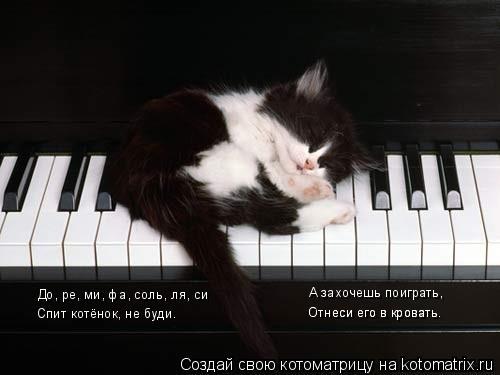 Котоматрица: До, ре, ми, фа, соль, ля, си Спит котёнок, не буди. А захочешь поиграть, Отнеси его в кровать. Отнеси его в кровать.