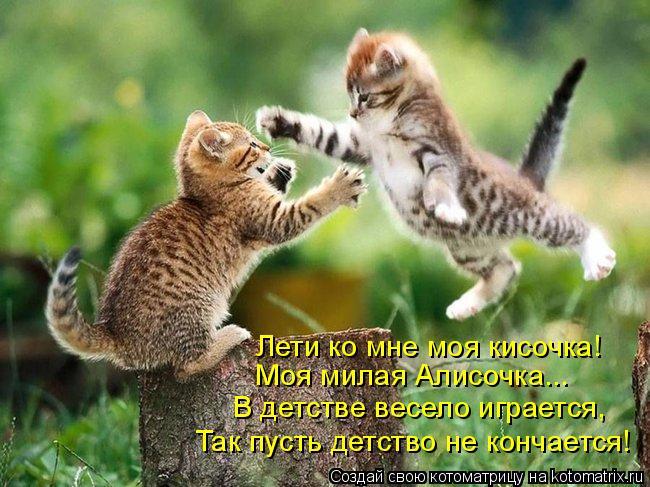 Котоматрица: Лети ко мне моя кисочка! Моя милая Алисочка... В детстве весело играется, Так пусть детство не кончается!