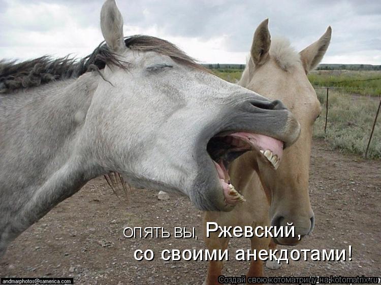 Котоматрица: Ржевский, со своими анекдотами! ОПЯТЬ ВЫ,