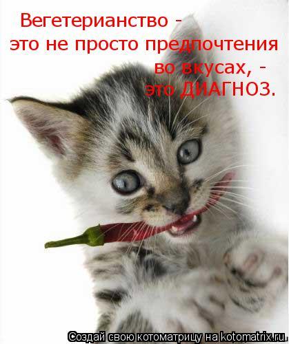 Котоматрица: Вегетерианство -  это не просто предпочтения во вкусах, - это ДИАГНОЗ.