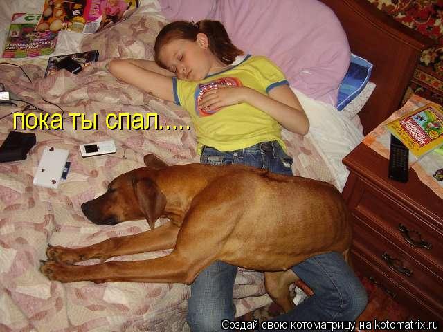 Котоматрица: пока ты спал.....