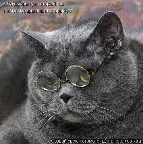 Котоматрица: У Лукоморья уж который год Мемурмурары пишет старый кот
