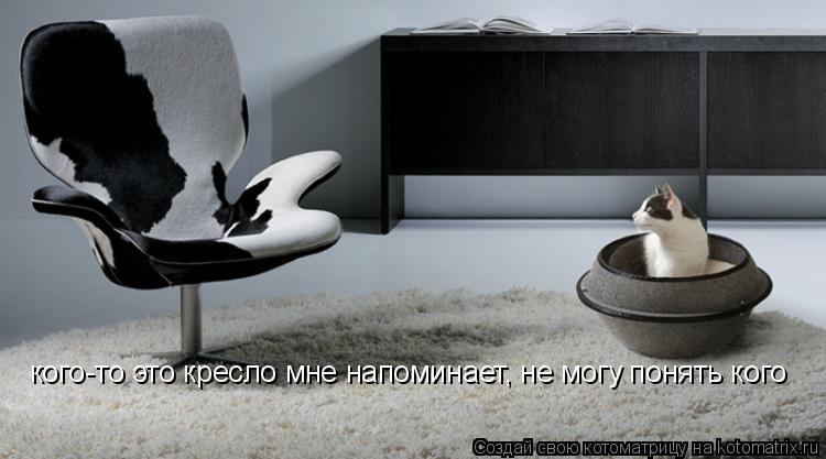 Котоматрица: кого-то это кресло мне напоминает, не могу понять кого