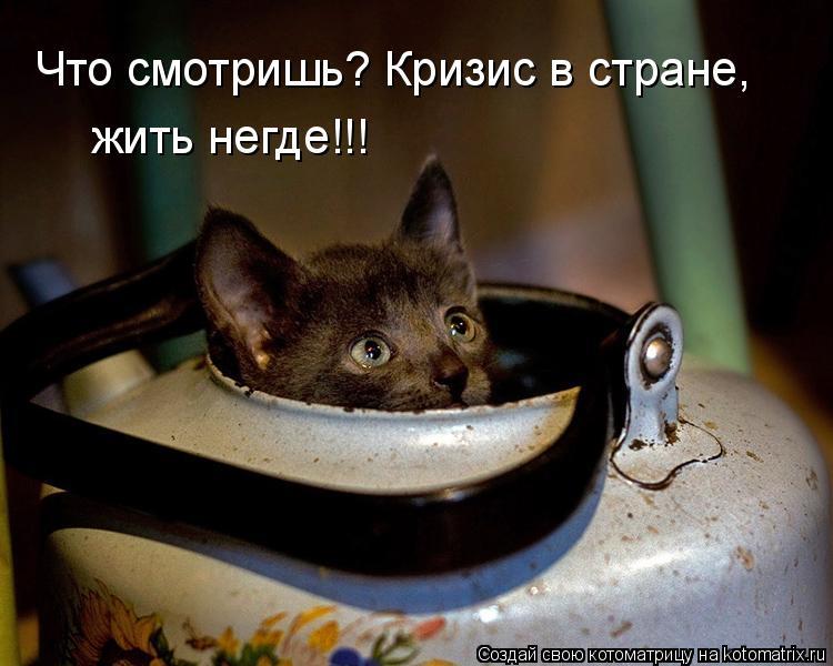Котоматрица: Что смотришь? Кризис в стране,  жить негде!!!