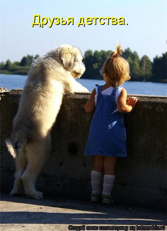 Котоматрица: Друзья детства.
