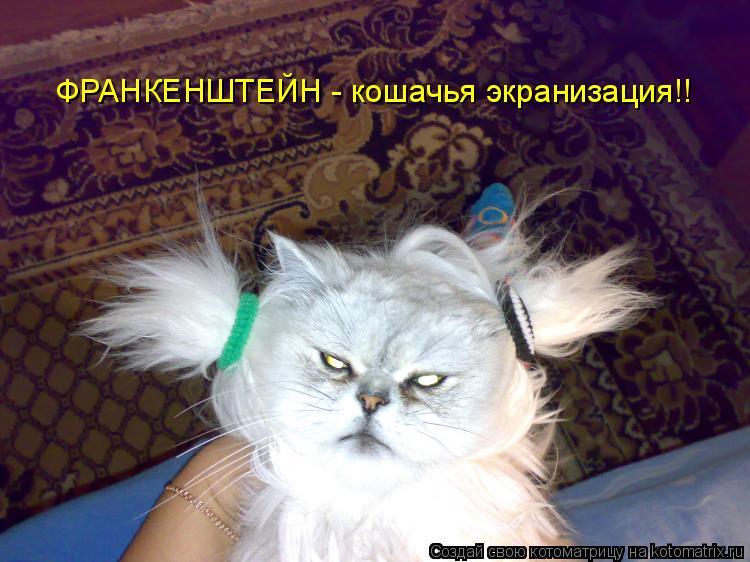 Котоматрица: ФРАНКЕНШТЕЙН - кошачья экранизация!!