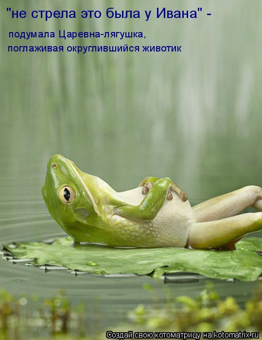 """Котоматрица: """"не стрела это была у Ивана"""" -  подумала Царевна-лягушка, поглаживая округлившийся животик"""