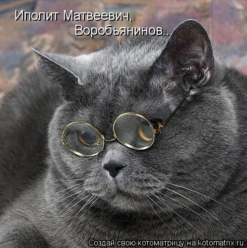 Котоматрица: Иполит Матвеевич,  Воробьянинов...