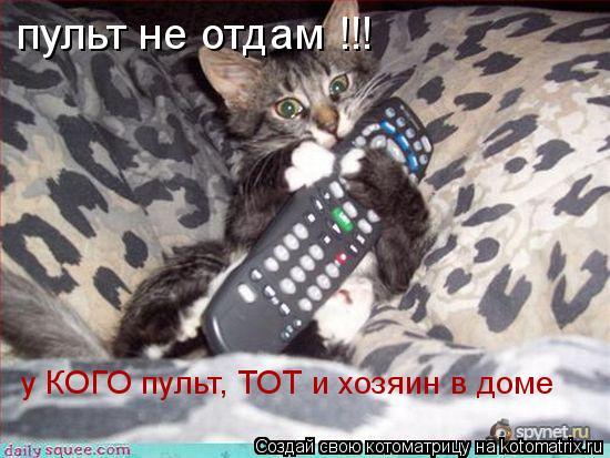 Котоматрица: пульт не отдам !!! у КОГО пульт, ТОТ и хозяин в доме