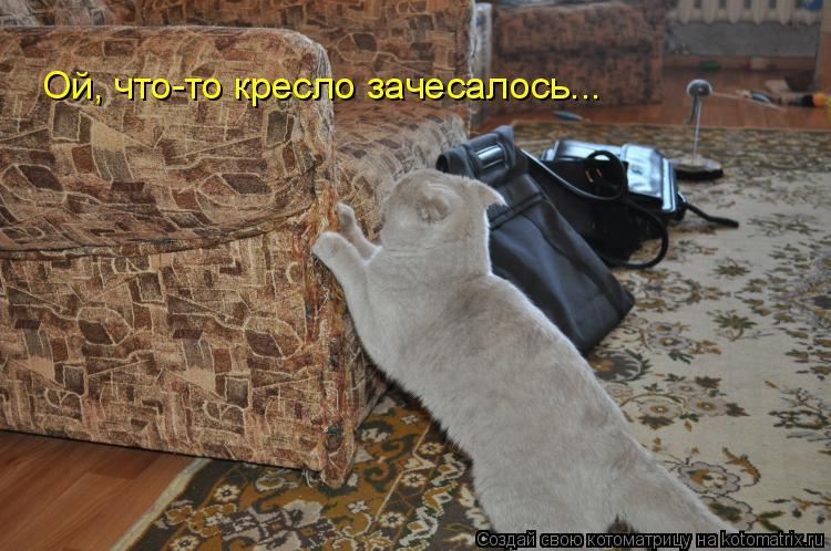 Котоматрица: Ой, что-то кресло зачесалось...