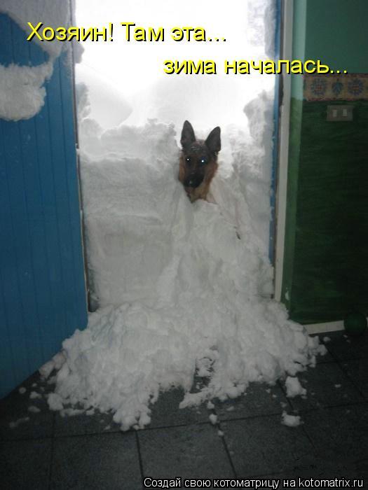 Котоматрица: Хозяин! Там эта... зима началась...