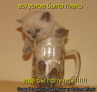 Котоматрица: вскусное было пивко  вскусное было пивко  ещё бы получить!!!!!! ещё бы получить!!!!!!