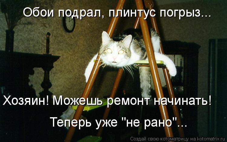 """Котоматрица: Обои подрал, плинтус погрыз... Хозяин! Можешь ремонт начинать! Теперь уже """"не рано""""..."""
