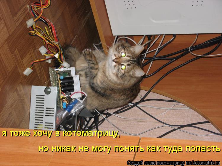 Котоматрица: я тоже хочу в котоматрицу, но никак не могу понять как туда попасть