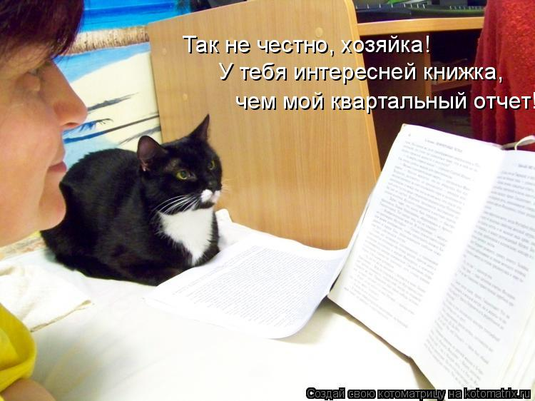 Котоматрица: Так не честно, хозяйка! У тебя интересней книжка,  чем мой квартальный отчет!