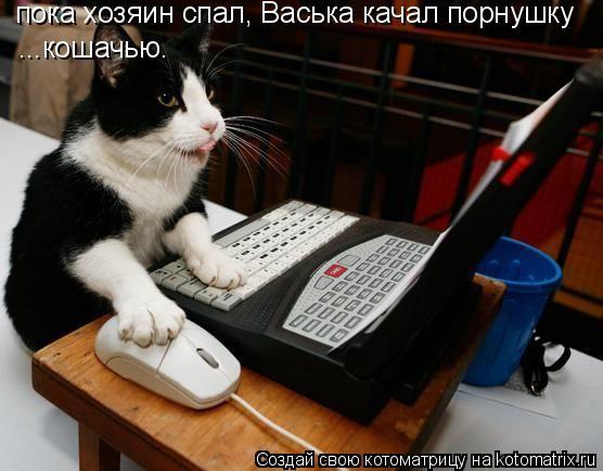 Котоматрица: пока хозяин спал, Васька качал порнушку ...кошачью.