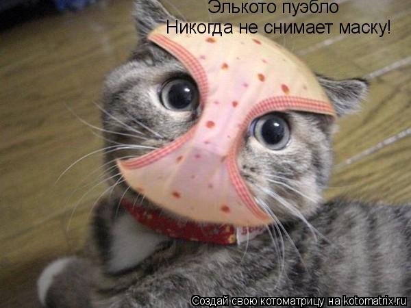 Котоматрица: Элькото пуэбло Никогда не снимает маску!