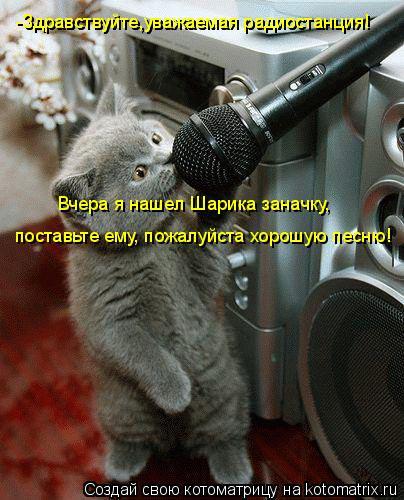 Котоматрица: -Здравствуйте,уважаемая радиостанция!  -Здравствуйте,уважаемая радиостанция!  поставьте ему, пожалуйста хорошую песню! Вчера я нашел Шарик