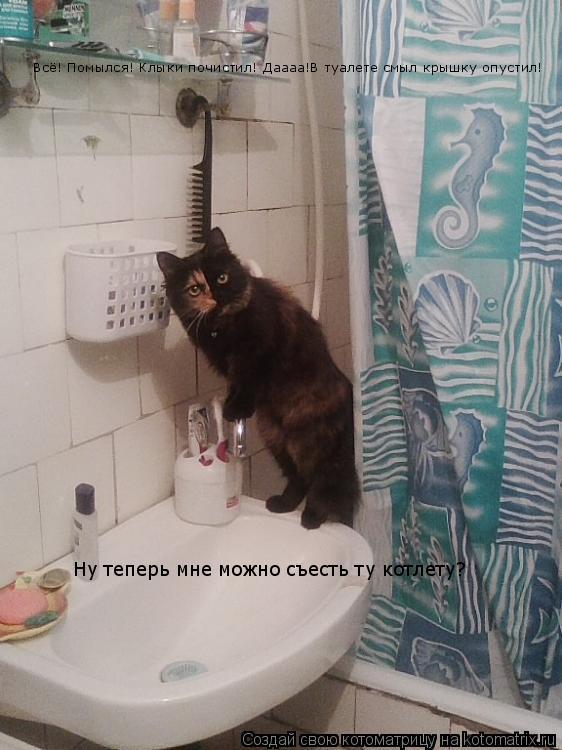 Котоматрица: Всё! Помылся! Клыки почистил! Даааа!В туалете смыл крышку опустил! Ну теперь мне можно съесть ту котлету?