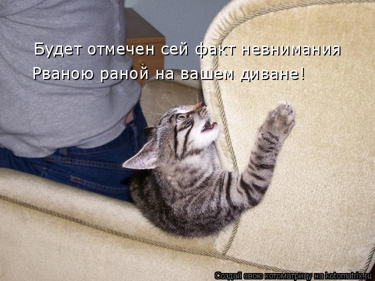 Котоматрица: Будет отмечен сей факт невнимания Рваною раной на вашем диване!