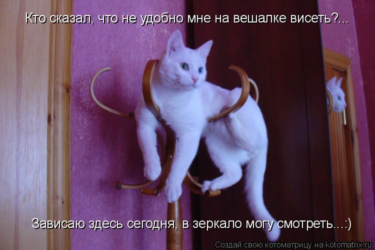 Котоматрица: Кто сказал, что не удобно мне на вешалке висеть?... Зависаю здесь сегодня, в зеркало могу смотреть...:)