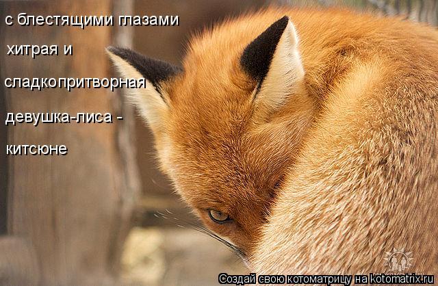 Котоматрица: с блестящими глазами хитрая и  сладкопритворная девушка-лиса -  китсюне