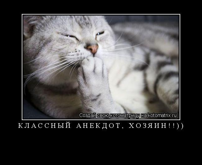 Котоматрица: КЛАССНЫЙ АНЕКДОТ, ХОЗЯИН!!))