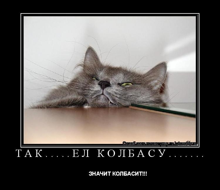 Котоматрица: ТАК.....ЕЛ КОЛБАСУ.......            ЗНАЧИТ КОЛБАСИТ!!!